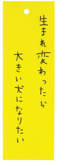 20150713_p_n01.jpg