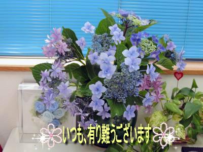 DSCN2011_ssc.jpeg