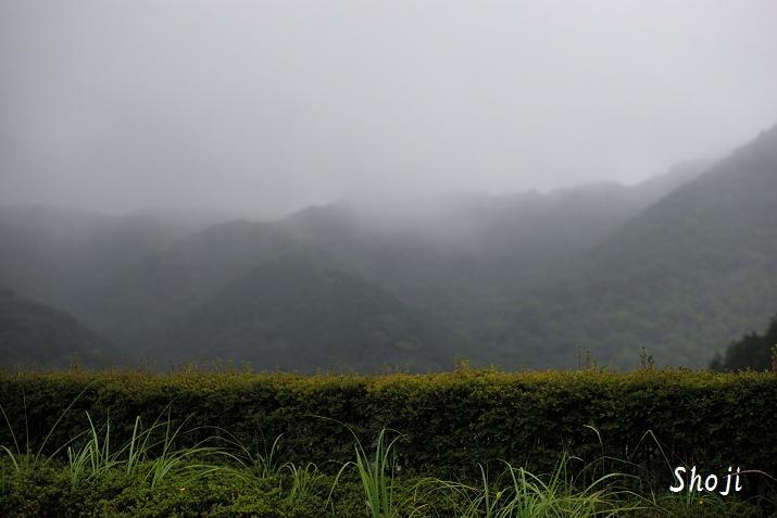 奥野ダム 梅雨の日々