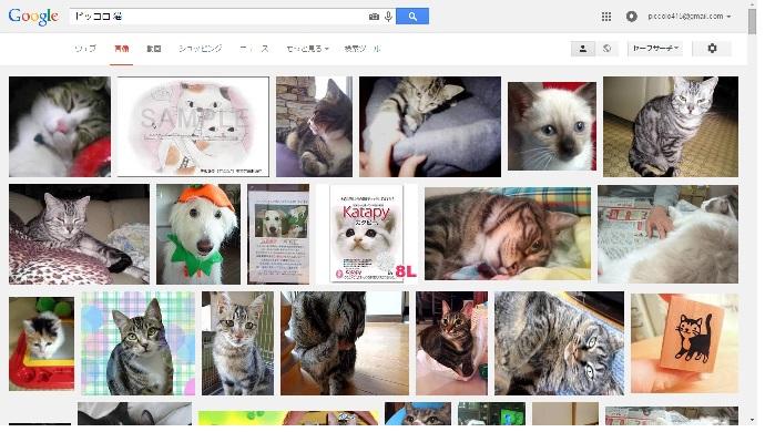 ピッコロ 猫での検索結果1