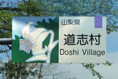 道志村 002