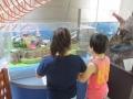 板橋教育科学館1