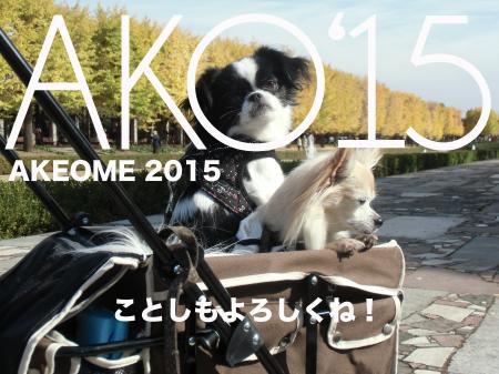 AKO2015_convert_20141231224106.jpg