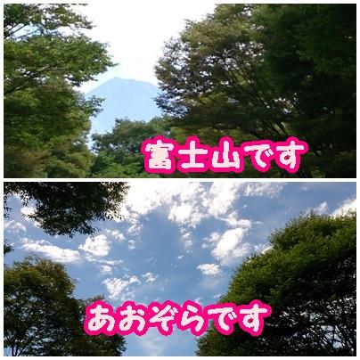 201507152.jpg