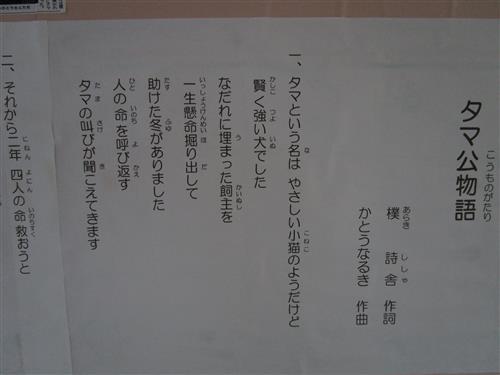 IMG_0549.jpg