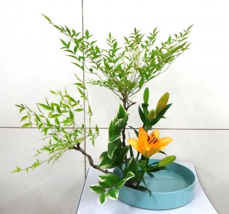 DSC00805-盛り花150601