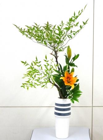 DSC00795-瓶花150601