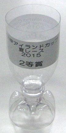 PET bottle winners Cup Silver