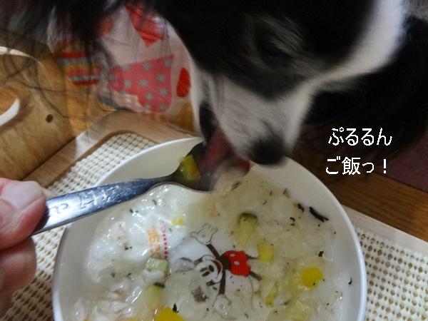 ぷるるんご飯♪