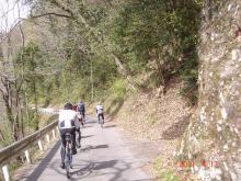 突然にプチメタライダーのサイクリング日記-裏道