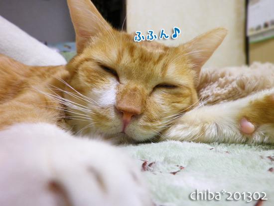 chiba15-06-09.jpg
