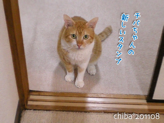 chiba15-08-12.jpg