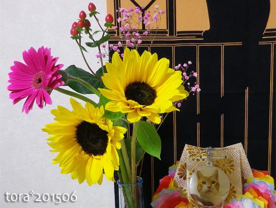 tora15-06-53.jpg