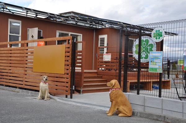 鶴見緑地ドッグラン②