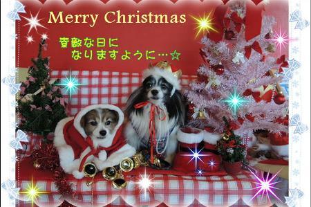 2014クリスマスメッセージ