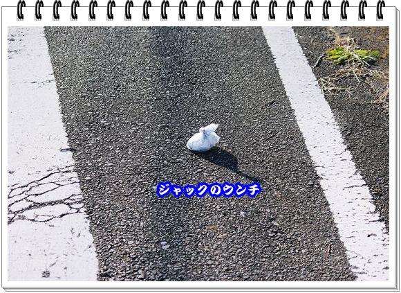 2126ブログNo10