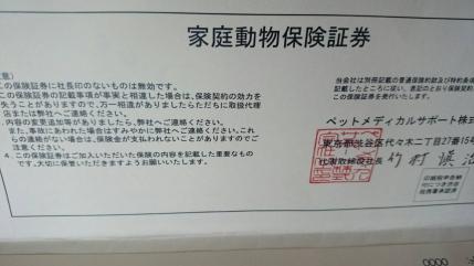 20150720111049c8f.jpg