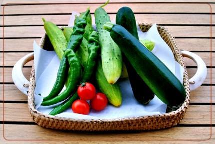 初採れ菜園の野菜