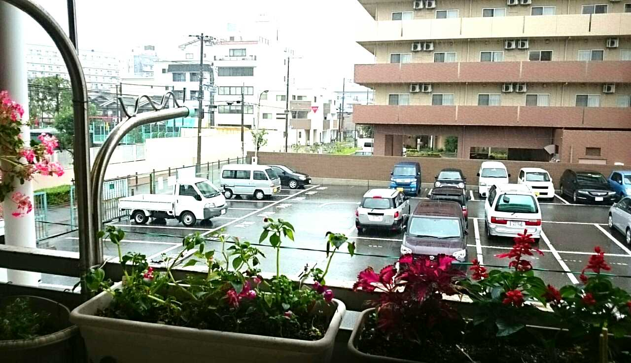 台風11号・ウィズユースマイル