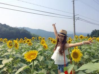 himawari856.jpg