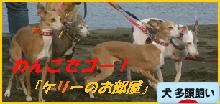 itabana3_20150722010240061.png