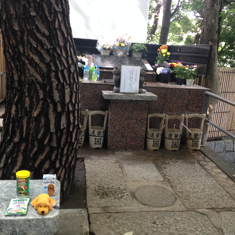 二郎さんのお墓