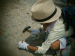 7月13日化石2