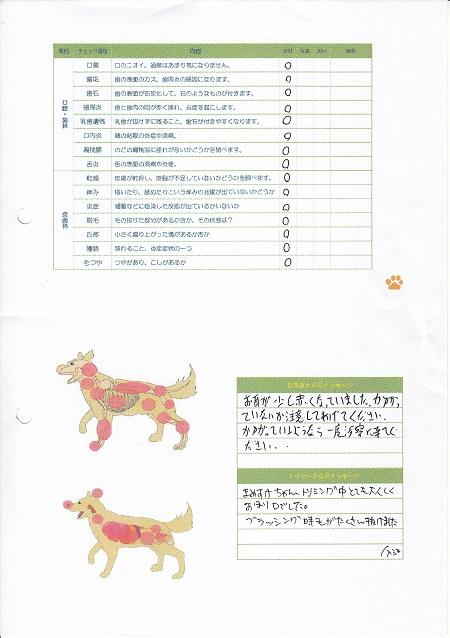 動物病院(06202015)20