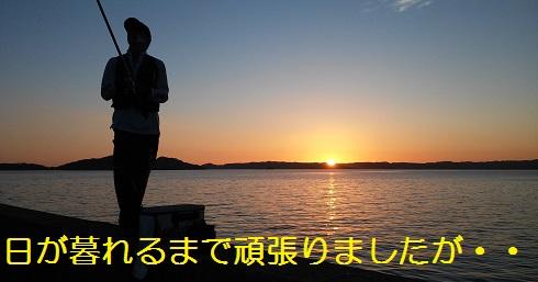 20150725_192038.jpg