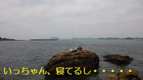 20150729_112621.jpg