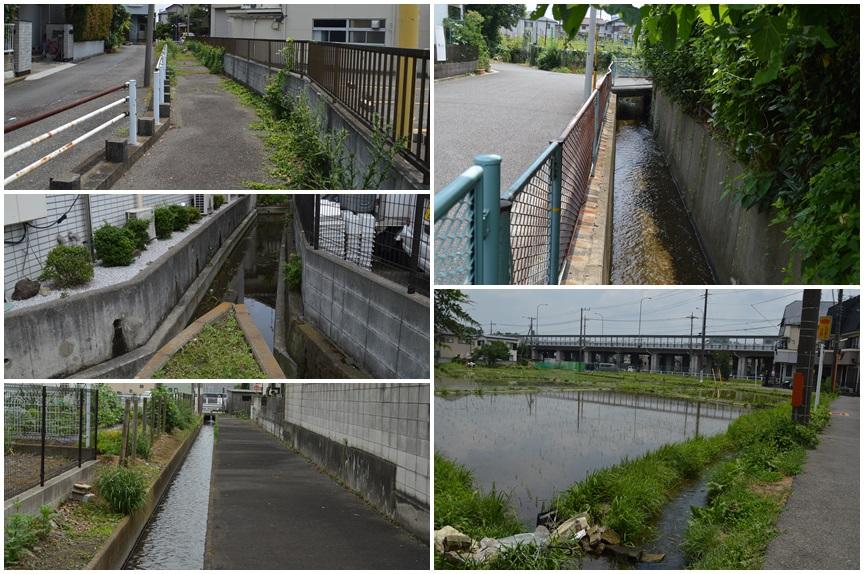 新田川支流1