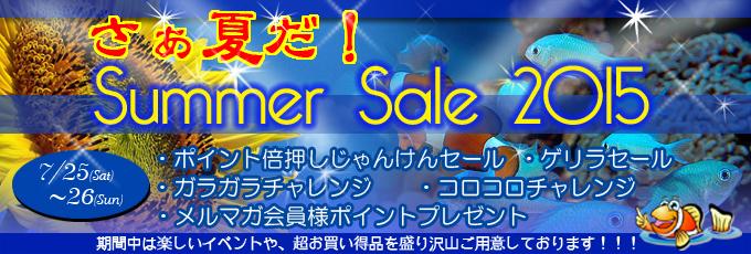 banner_summer-701ab.jpg