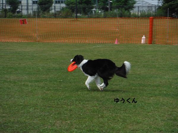 DSCF0100-1.jpg