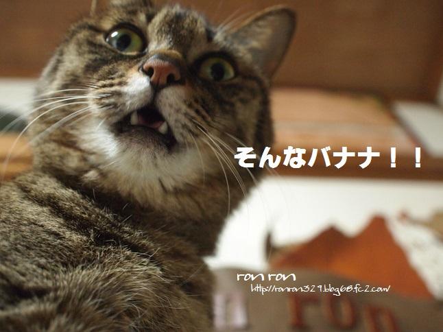 ぷち141