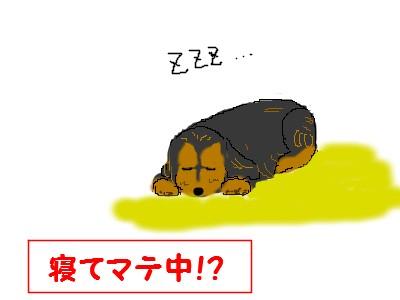 寝たらあかん
