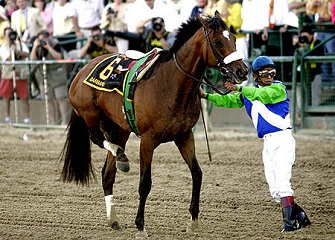 20150809_Blog02_Topic_RacehorseInjury_Pict0.jpg