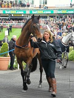 20150809_Blog05_Topic_HorsemanInjury_Pict0.jpg