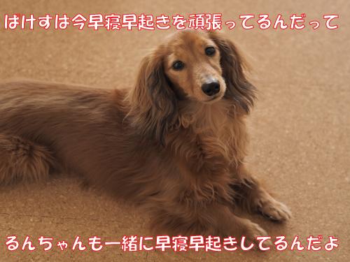 150602-001.jpg