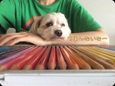色えんぴつらっくん③