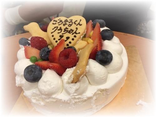 わんこケーキ