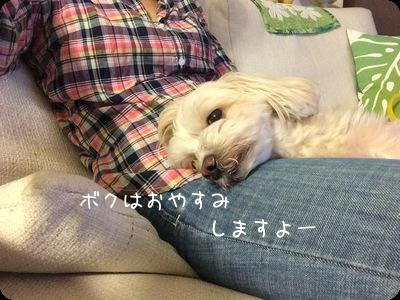お休みらっくん