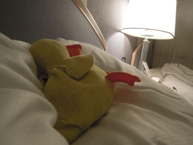 お休みクワ!