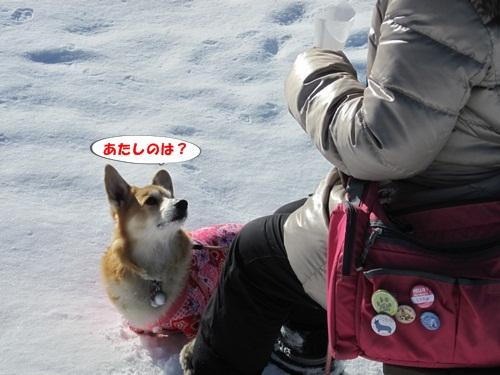 リュラお散歩2014.12.29~31 088