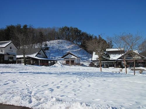 リュラお散歩2014.12.29~31 073