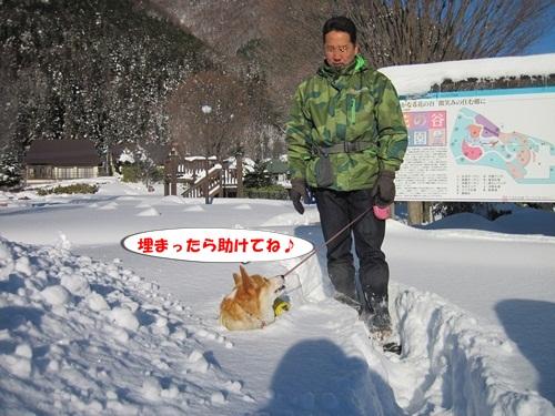 リュラお散歩2014.12.29~31 023