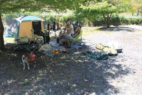2015左中キャンプ場 003-001