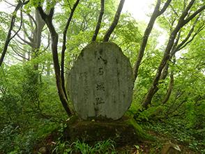 125166.jpg