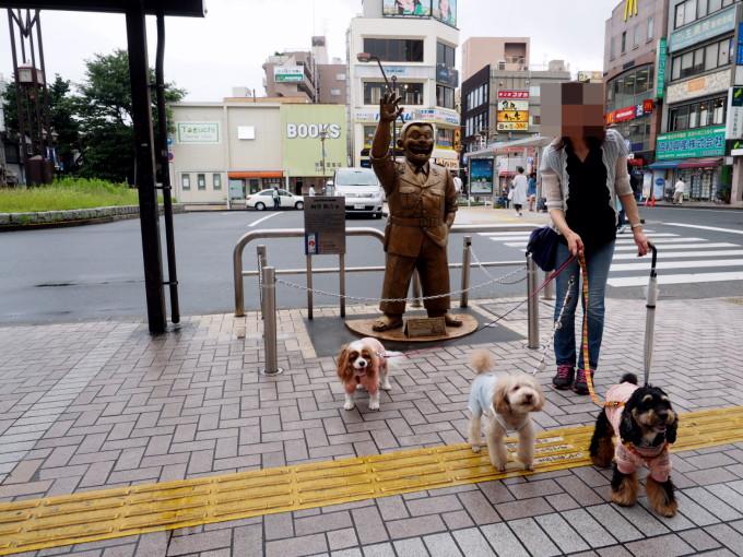 blog_P7053438.jpg