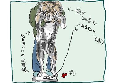 最後の体重測定