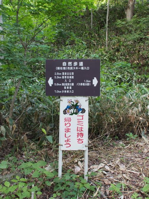 下山(藻岩山スキー場入口着)
